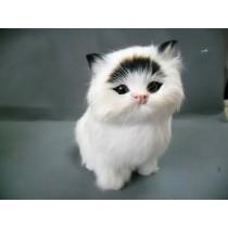 Model кошка