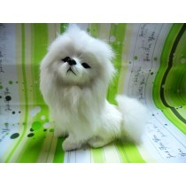 Model собака