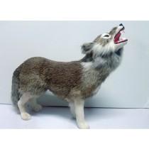 Model волк