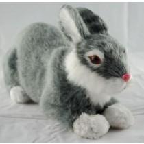 Model кролик